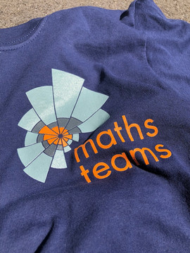 Maths Team t-shirt