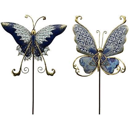 "Schmetterling "" Bläuling """