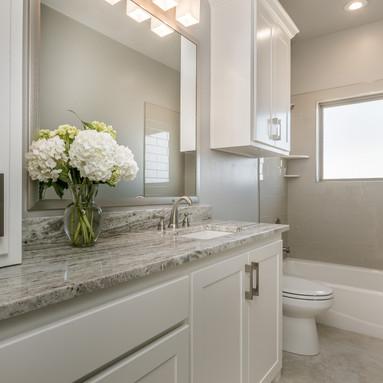 021_Hall Bathroom.jpg