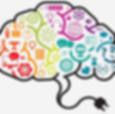 Brain-Training-1.png