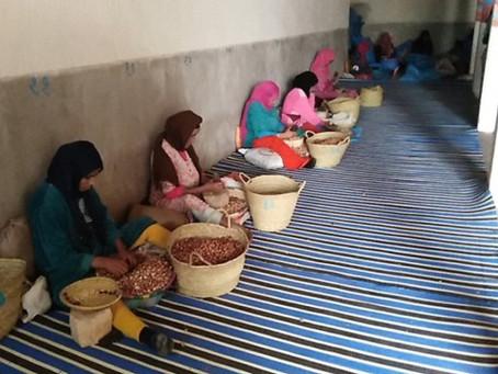Marocavie - Équipement des centres de concassage