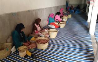 Equipement des centres de concassage de noix d'Argan