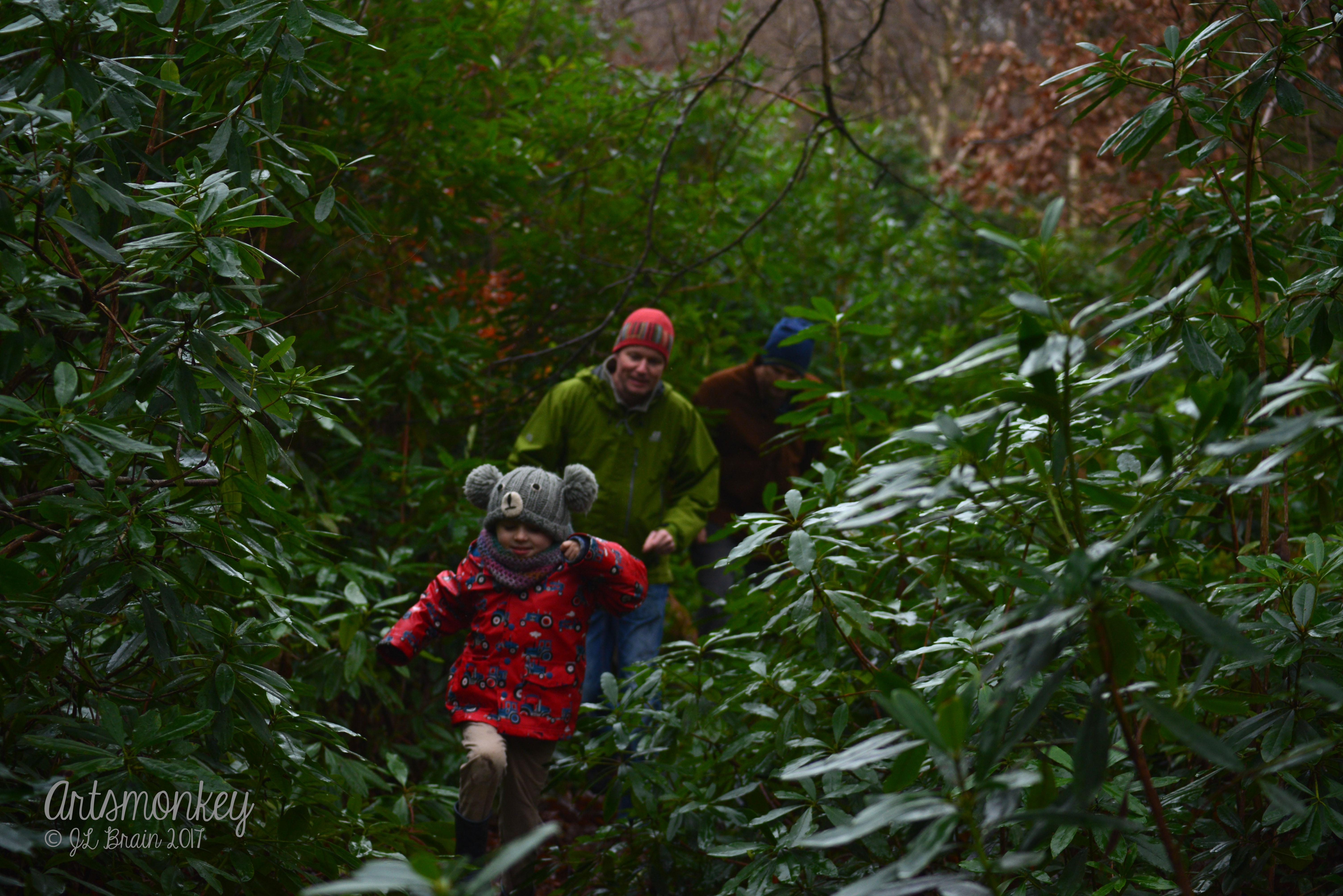 Bear Hunt 02