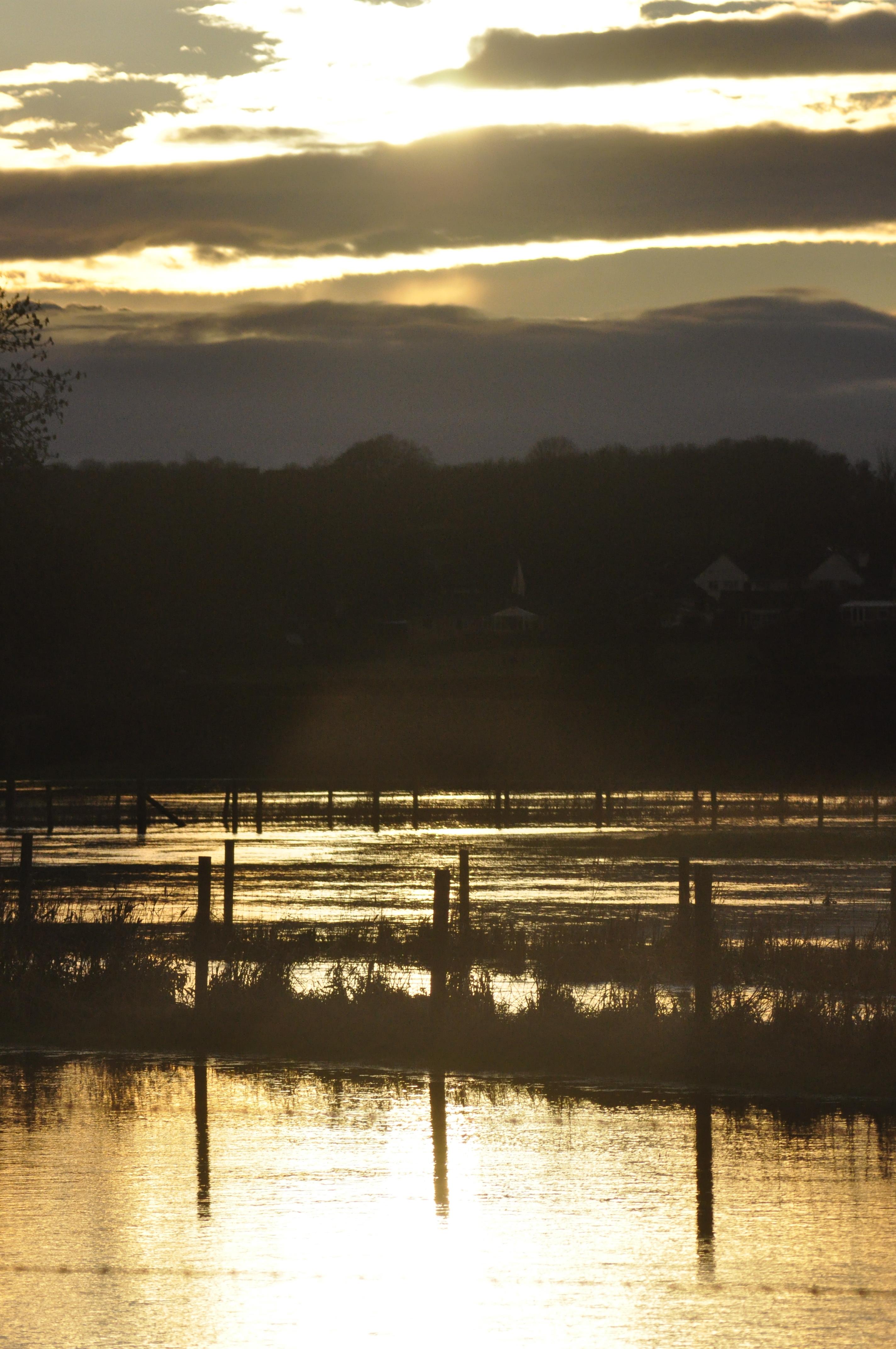 Flooded03.JPG