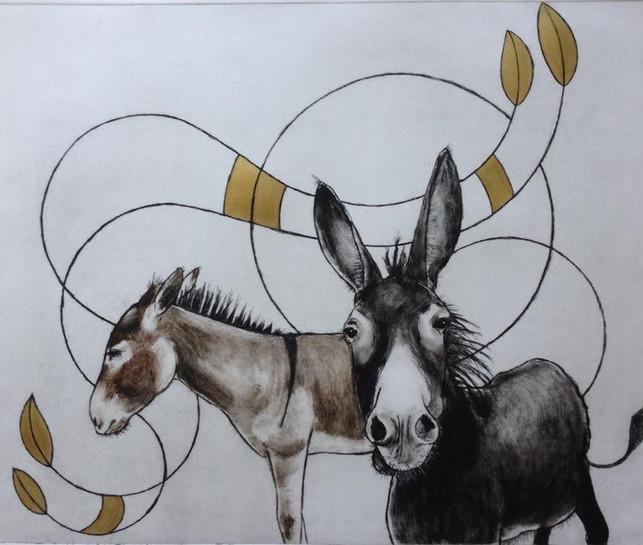 Krystyna's donkeys