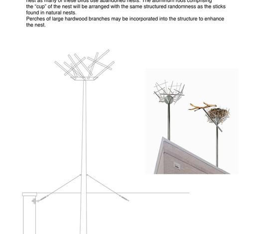 Detail of raptor nests.