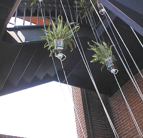 Detail showing plants in stairwell.