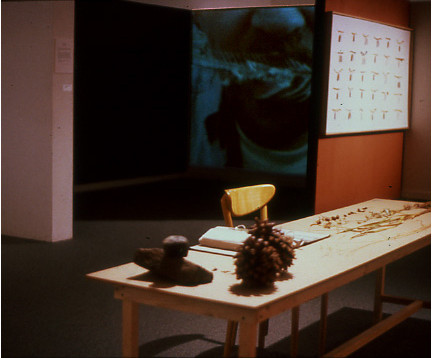 Detail of video installation.