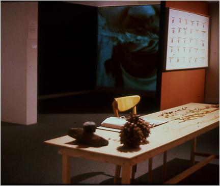 Detail of video installation.