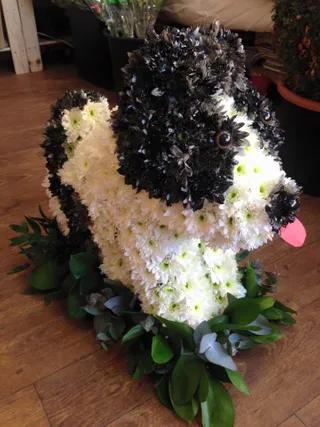 funeral 5.webp