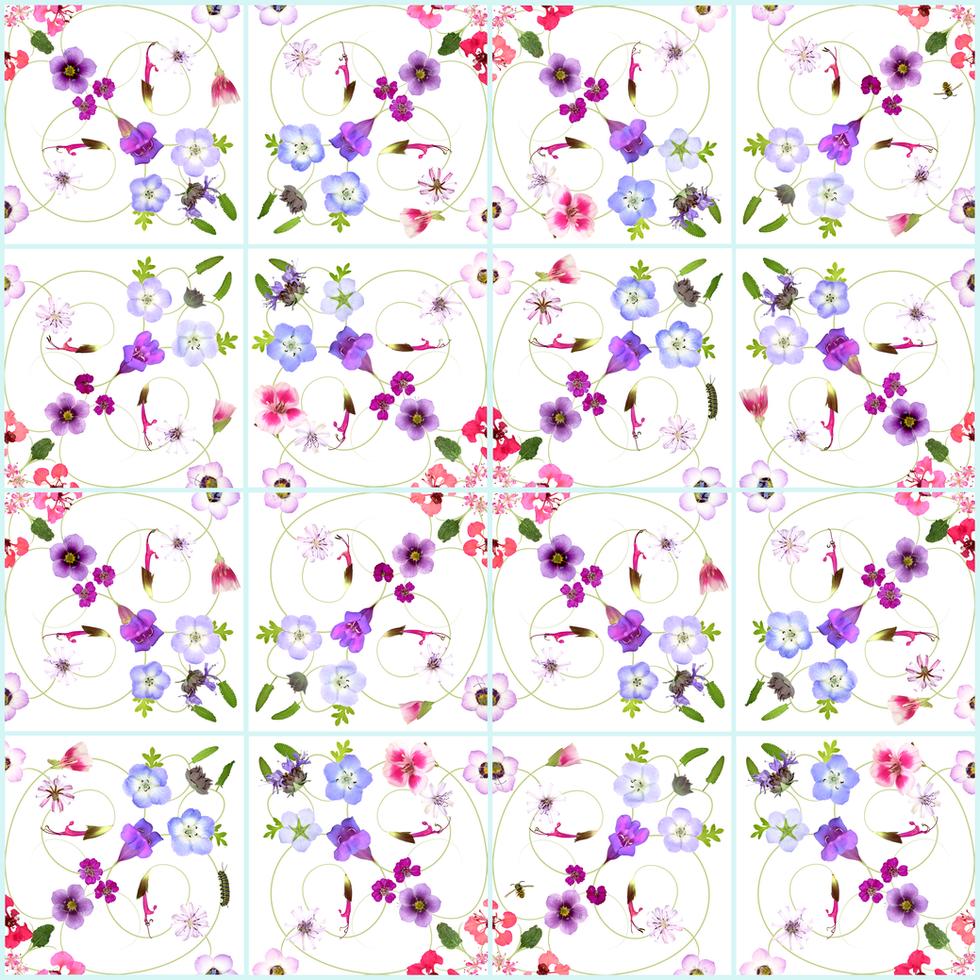 California Native Flowers Pattern