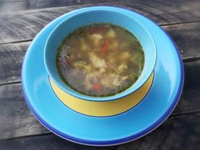 Chicken & veggies soup