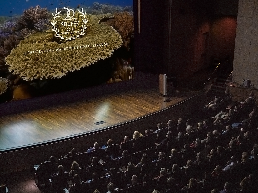 SDUFEX stage.png