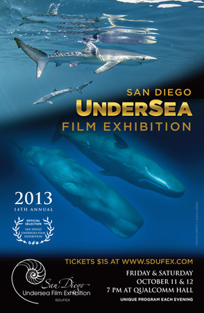 SDUFEX 2013 Poster.jpg