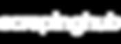 scraping-hub-logo-WHITE-RGB-01.png