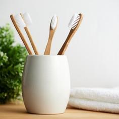Single Use Plastic Alternatives