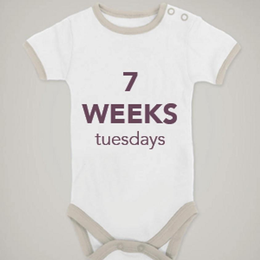 7-Week | January | TUESDAYS