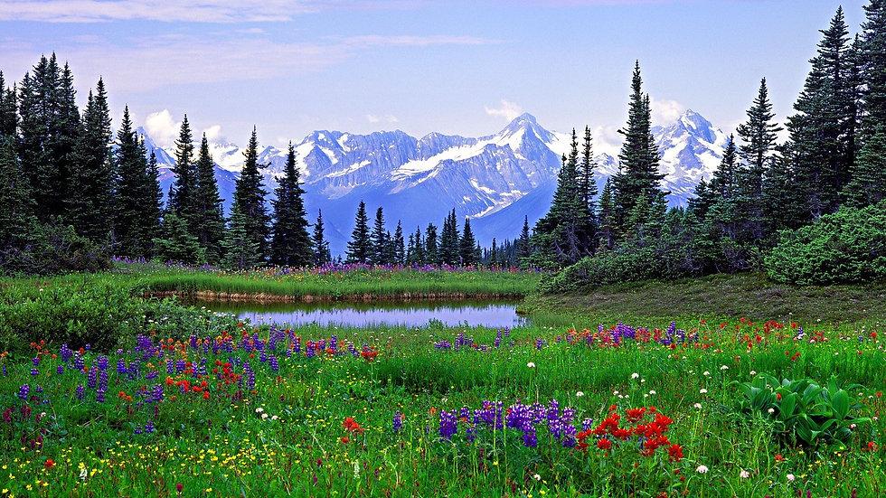 Spring Mountains.jpg