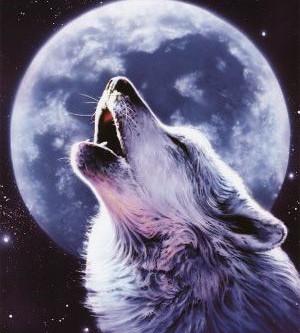 Ω Friday's Full Moon Eclipse Ω