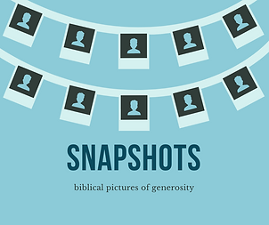 Website - Snapshots.png