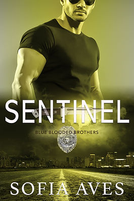Sentinel Final.jpg