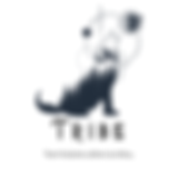 tribe logo avec tag line.png
