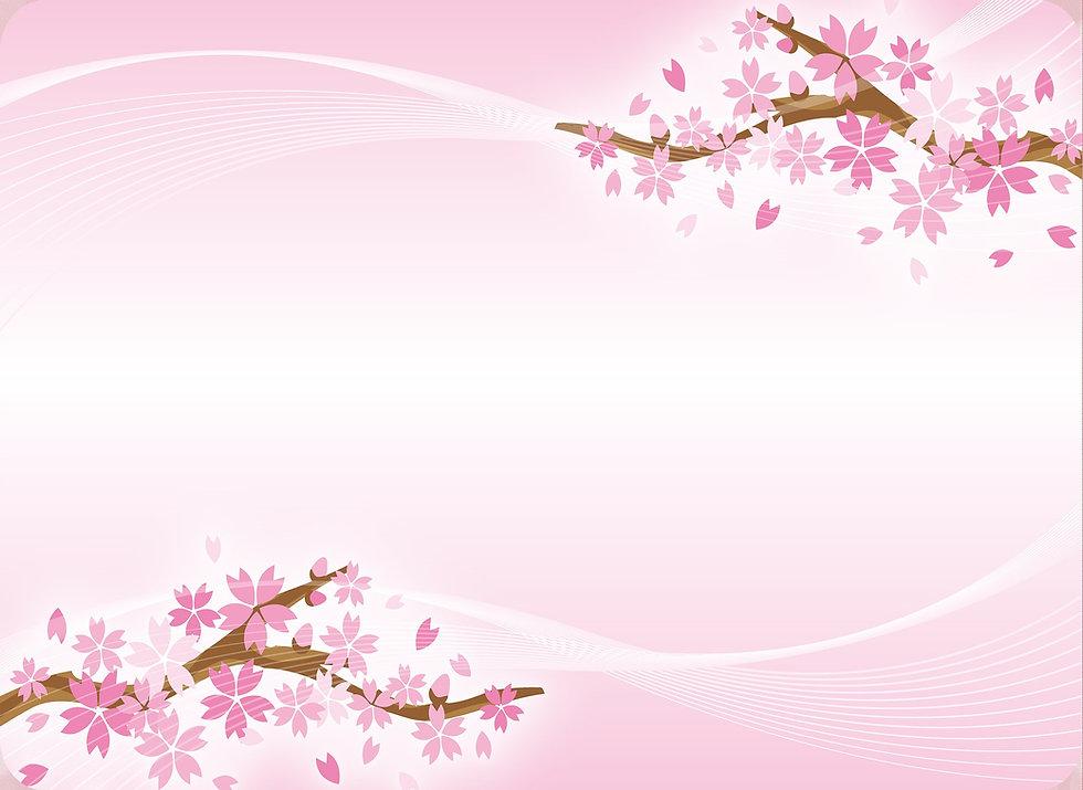 sakura-blossoms-3774153_1920.jpg