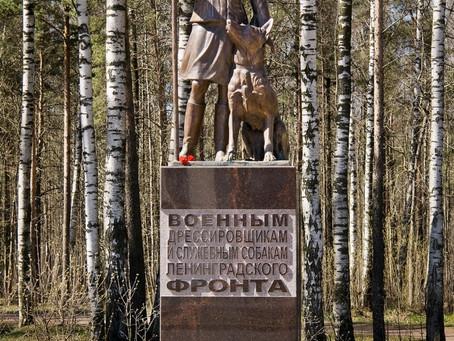 Памятник военной дрессировщице и собаке-саперу в Санкт-Петербурге