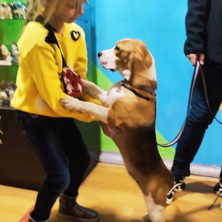 Охотник и дворянин в Музее Собаки