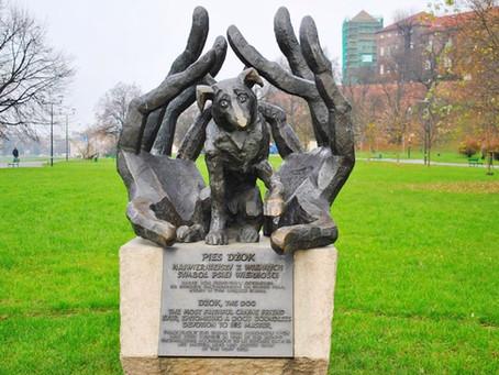 Памятник собаке Джоку в Кракове