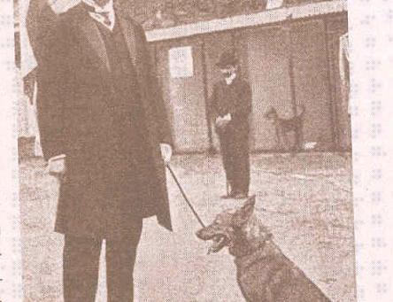 Образцовая полицейская школа-собачья