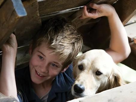 Алмазный пес