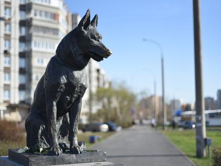 Памятник Преданности, г. Тольятти