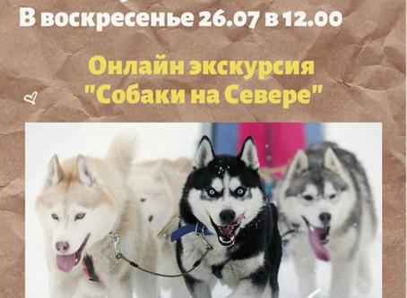 """Онлайн экскурсия """"Собаки на Севере"""""""