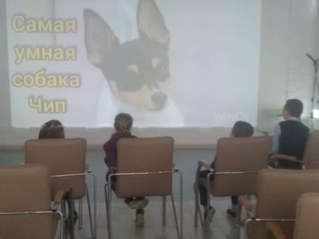 Музей Собаки едет к вам в школу