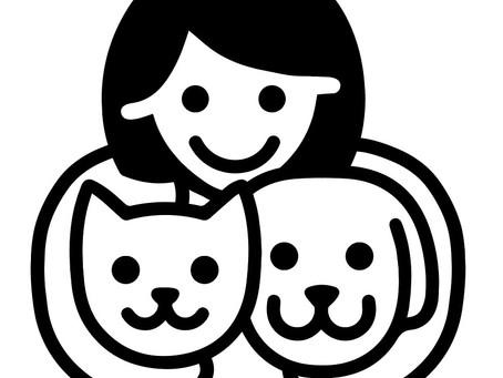 Новый интернет-магазин Музея Собаки
