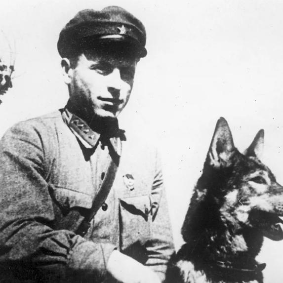 """Онлайн экскурсия """"Собаки на Войне"""" - запись"""