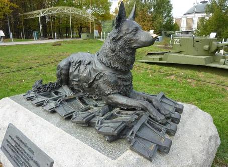 День фронтовой собаки 15 августа