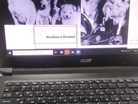 Первая онлайн экскурсия Музея Собаки