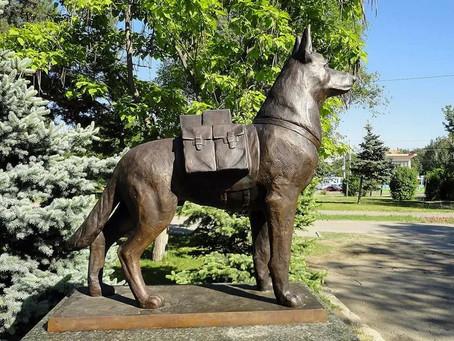 Памятник собакам подрывникам в Волгограде