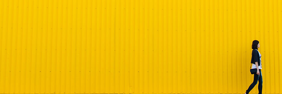 Collection_Background_Color.jpg