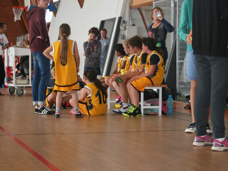 Le Basket en ligne
