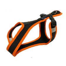 Zero DC Short Dog Harness