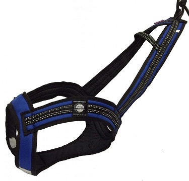 Zero DC Long Harness