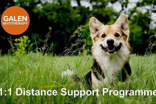 Distance Support Programme