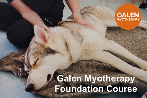Galen Myotherapy Foundation Course