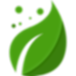 leaf-icon-25.png