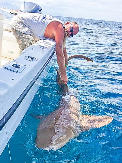 Kenny Battles a Shark