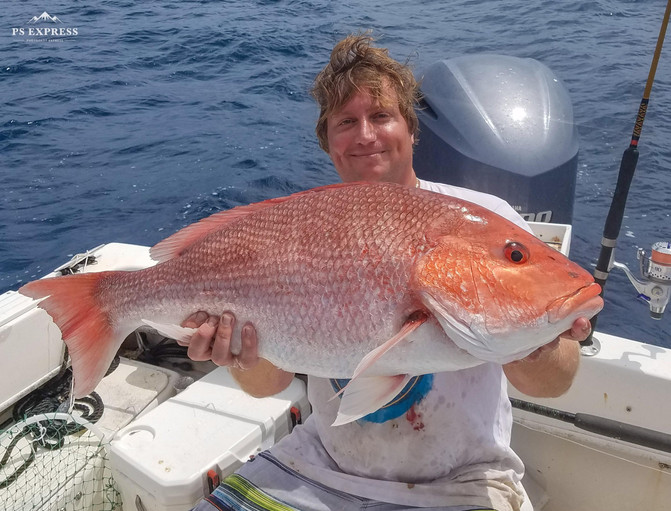 Holy Red Snapper!