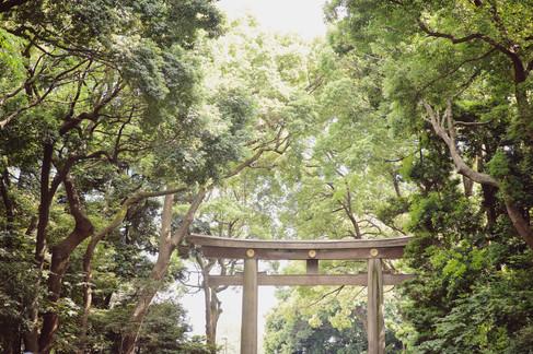 TRADITIONAL WEDDING AT MEIJI SHRINE TOKYO BY DESTINATION WEDDING PHOTOGRAPHER 2